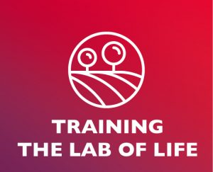 Button duurzame inzetbaarheid tool Training The Lab of Life